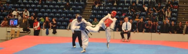TSV Abteilung Taekwondo